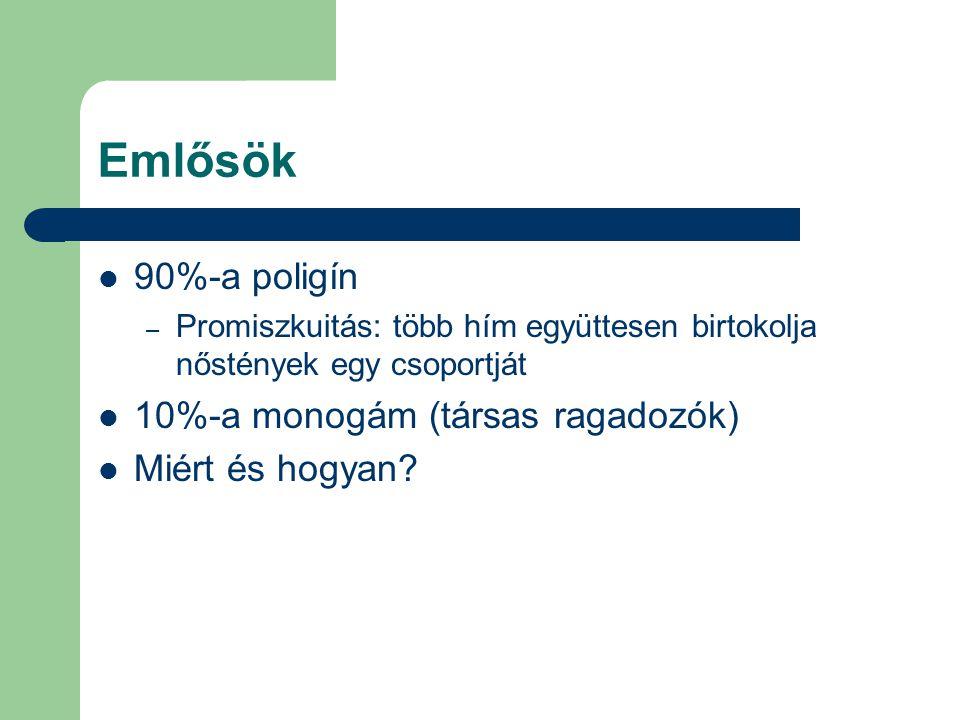 Emlősök 90%-a poligín 10%-a monogám (társas ragadozók)
