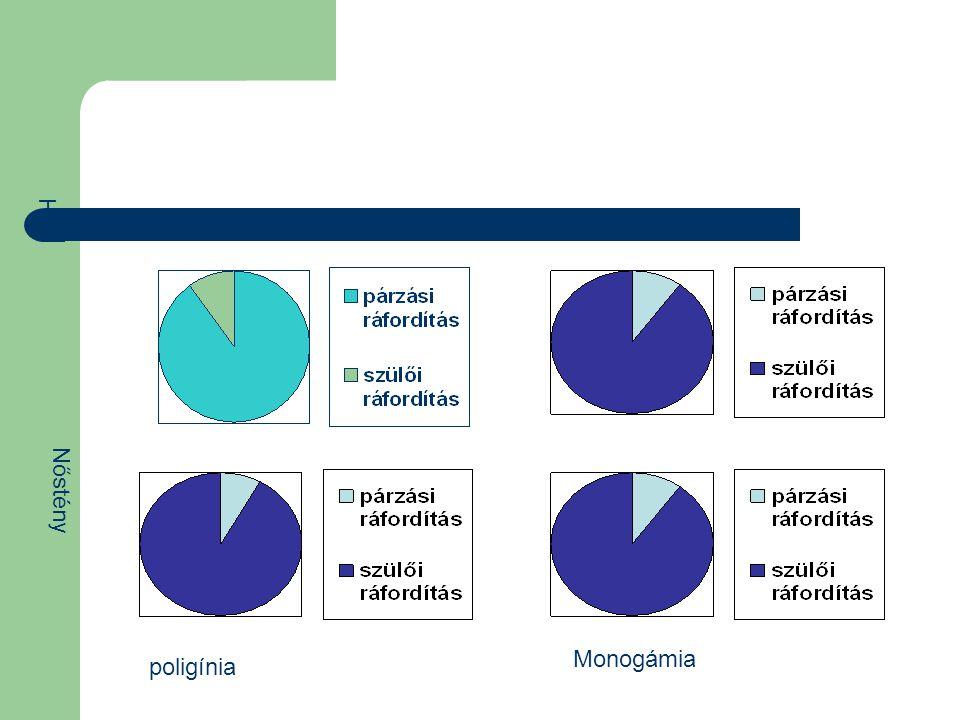 Hím Nőstény Monogámia poligínia