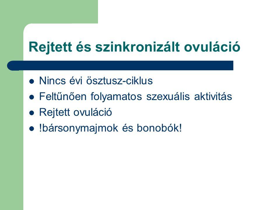 Rejtett és szinkronizált ovuláció