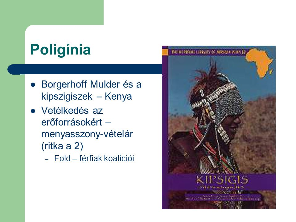 Poligínia Borgerhoff Mulder és a kipszigiszek – Kenya