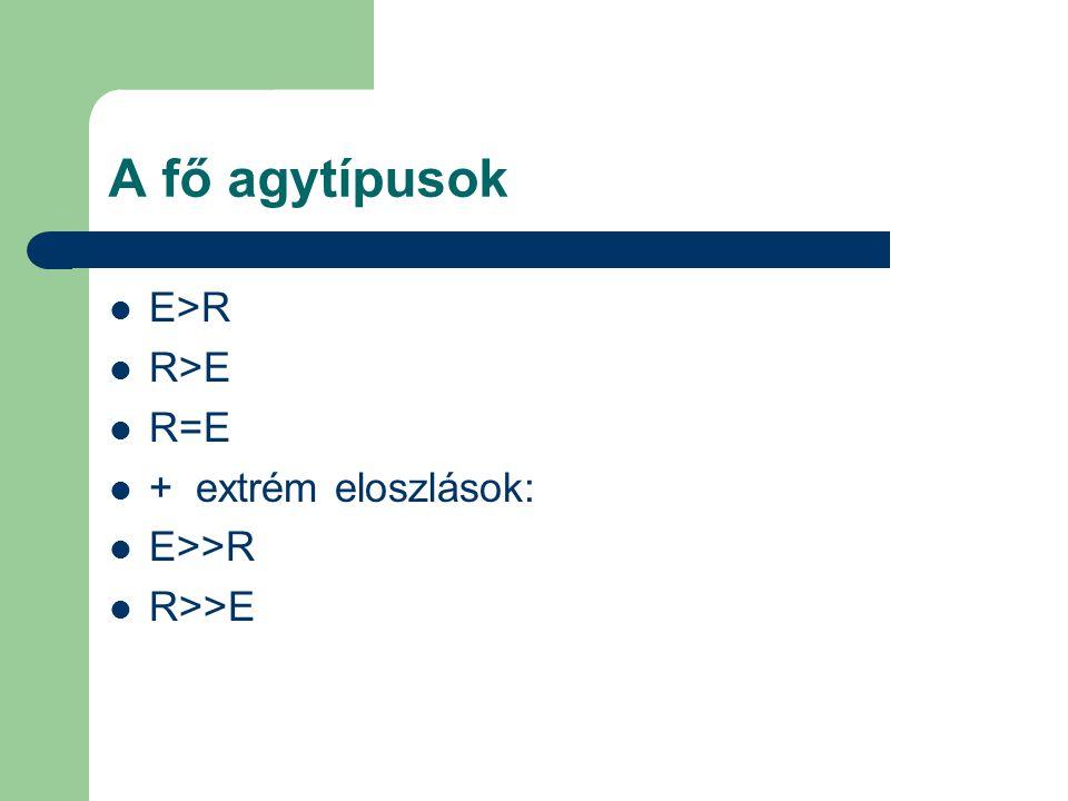 A fő agytípusok E>R R>E R=E + extrém eloszlások: E>>R