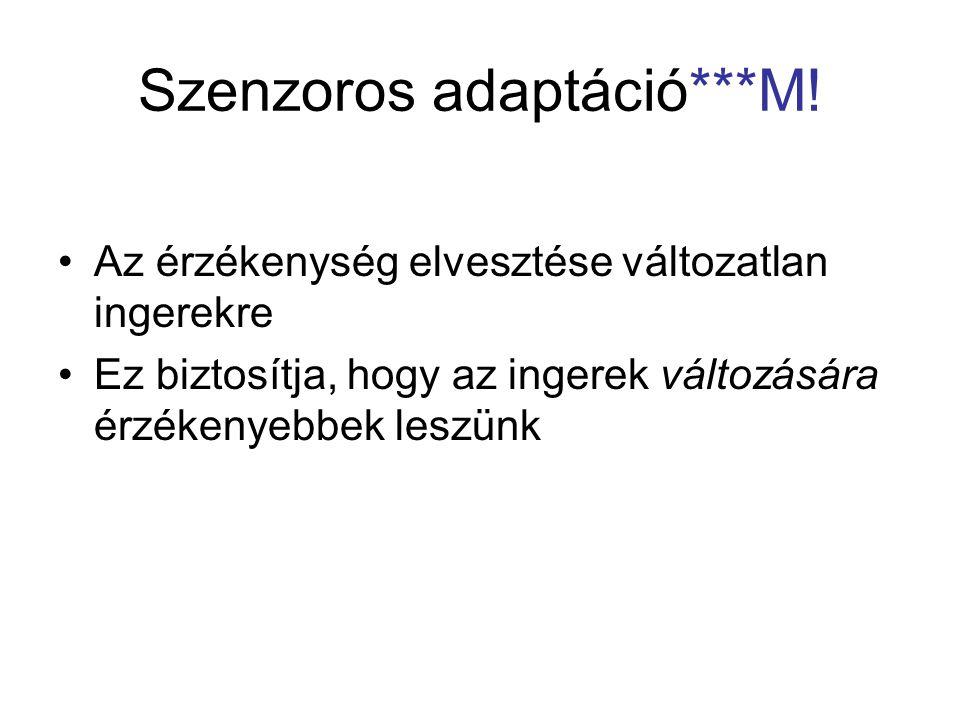 Szenzoros adaptáció***M!