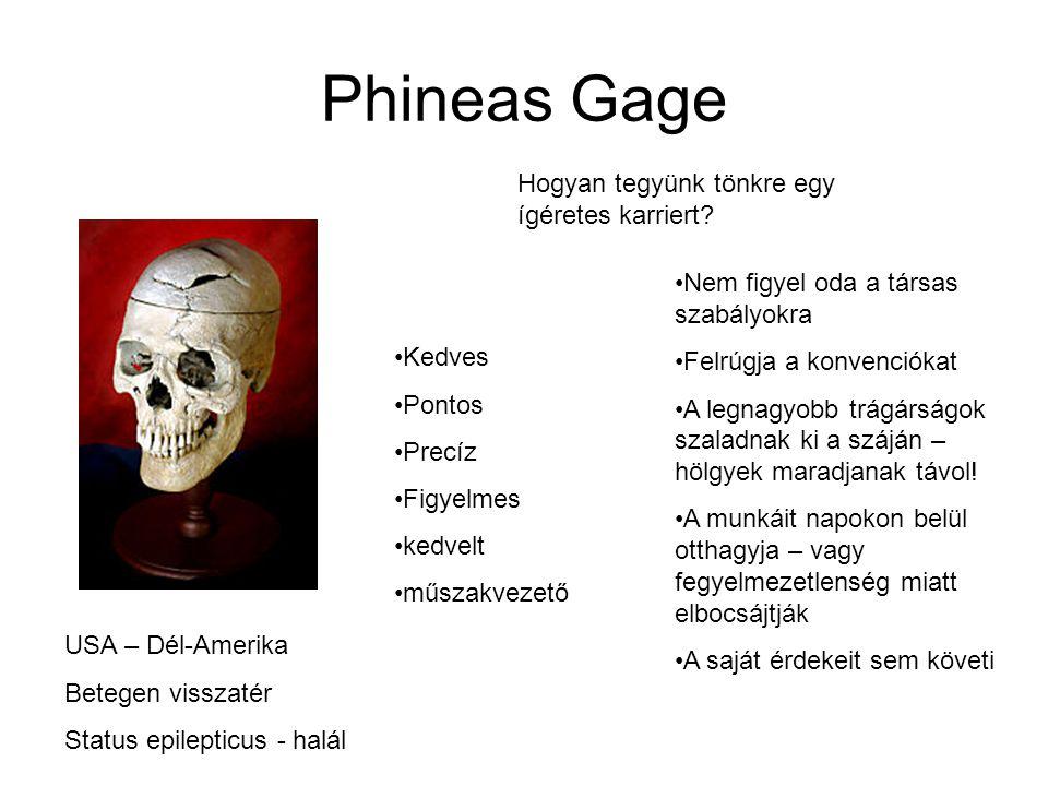 Phineas Gage Hogyan tegyünk tönkre egy ígéretes karriert
