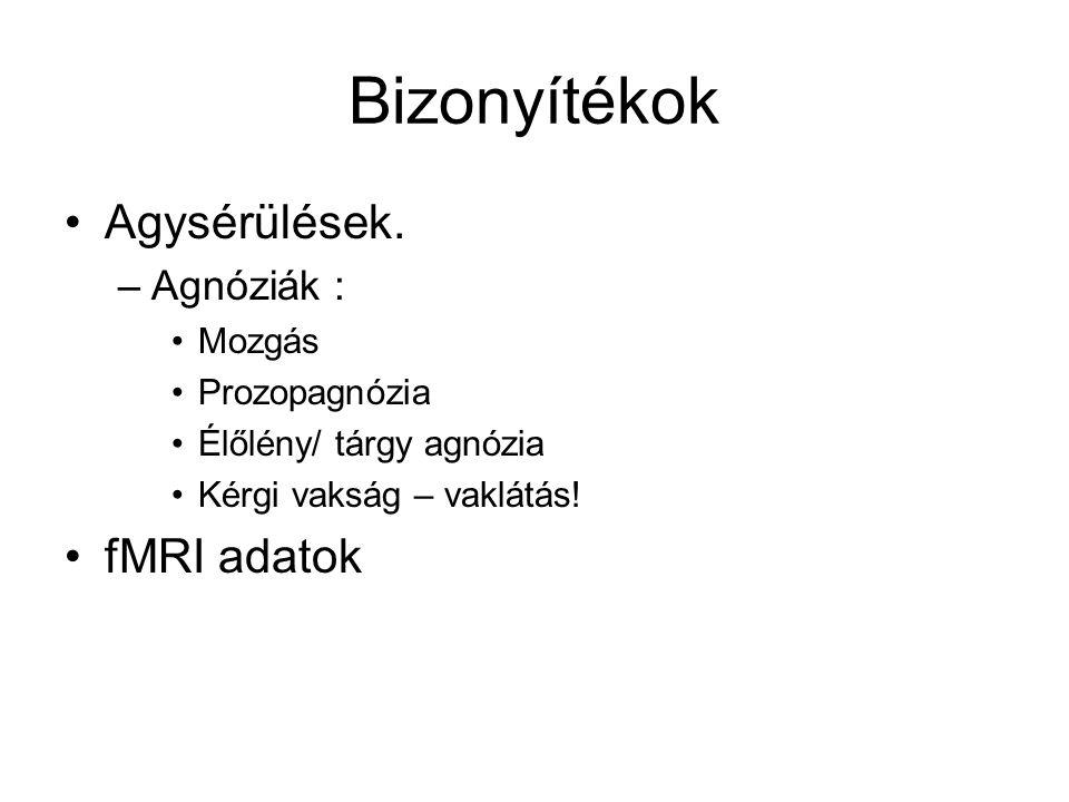Bizonyítékok Agysérülések. fMRI adatok Agnóziák : Mozgás Prozopagnózia