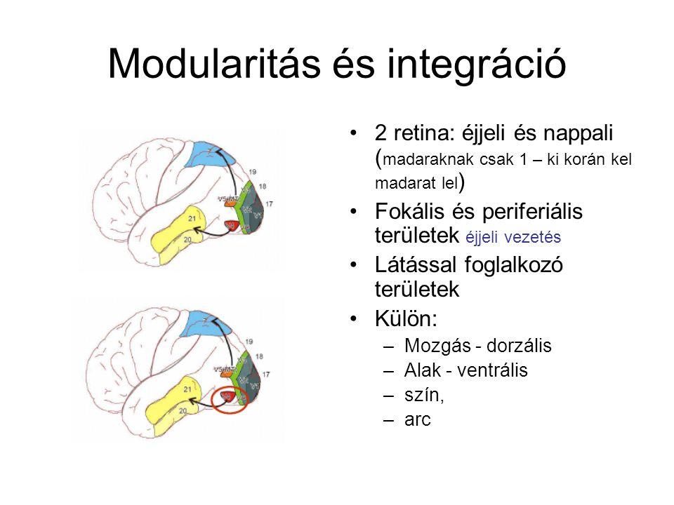 Modularitás és integráció