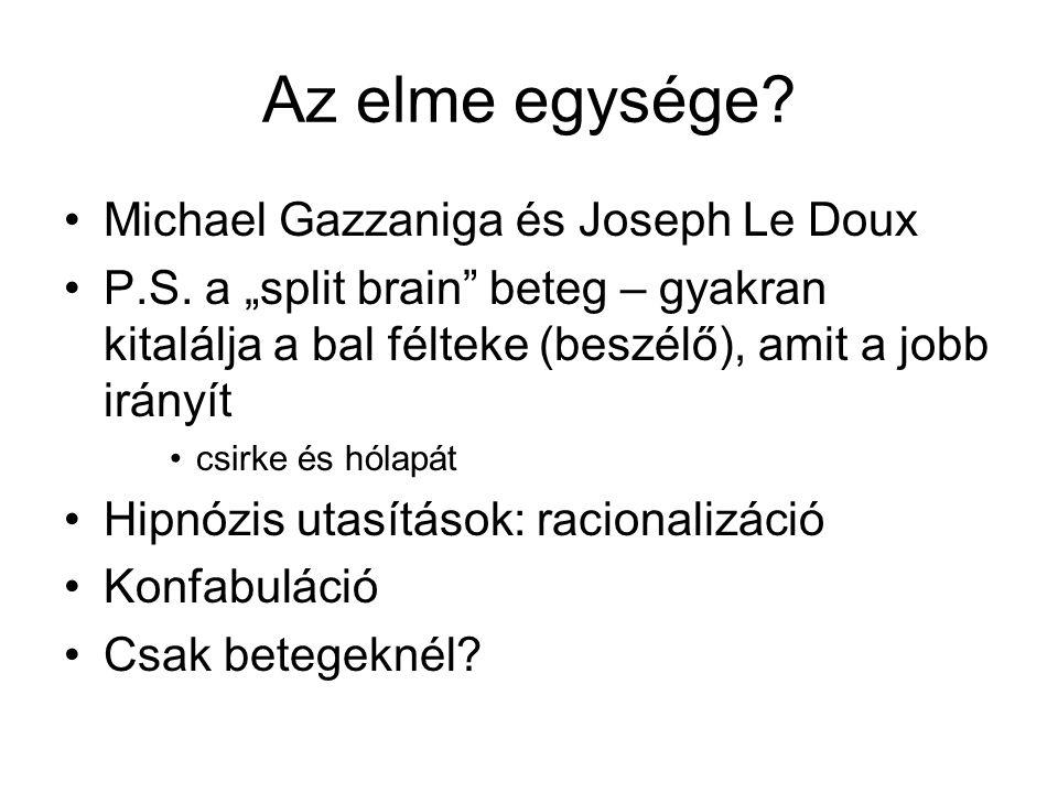Az elme egysége Michael Gazzaniga és Joseph Le Doux