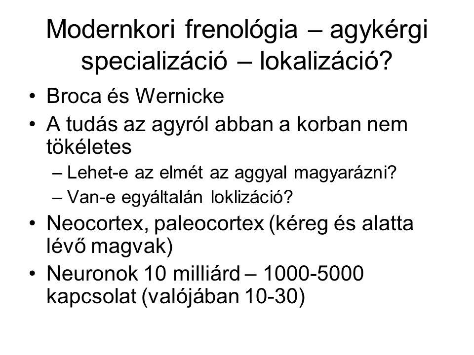 Modernkori frenológia – agykérgi specializáció – lokalizáció