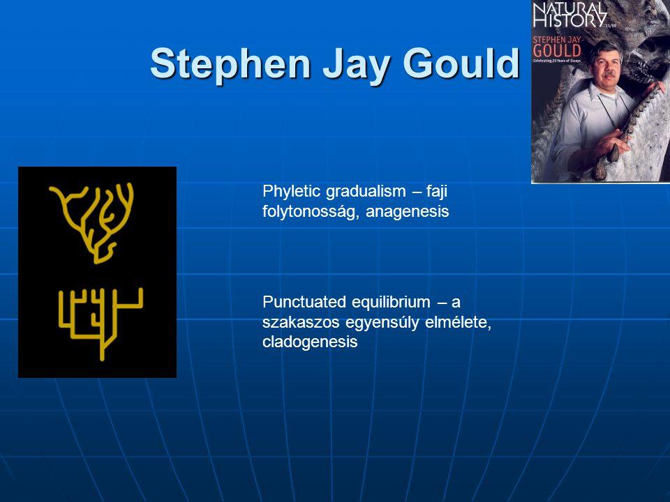 Stephen Jay Gould Phyletic gradualism – faji folytonosság, anagenesis
