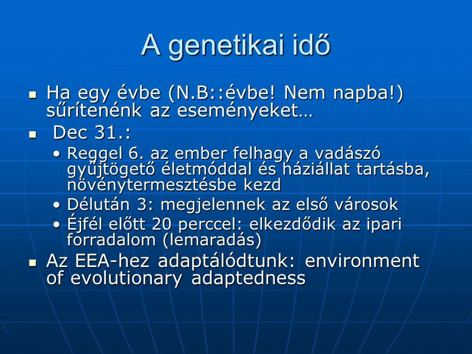 A genetikai idő Ha egy évbe (N.B::évbe! Nem napba!) sűrítenénk az eseményeket… Dec 31.: