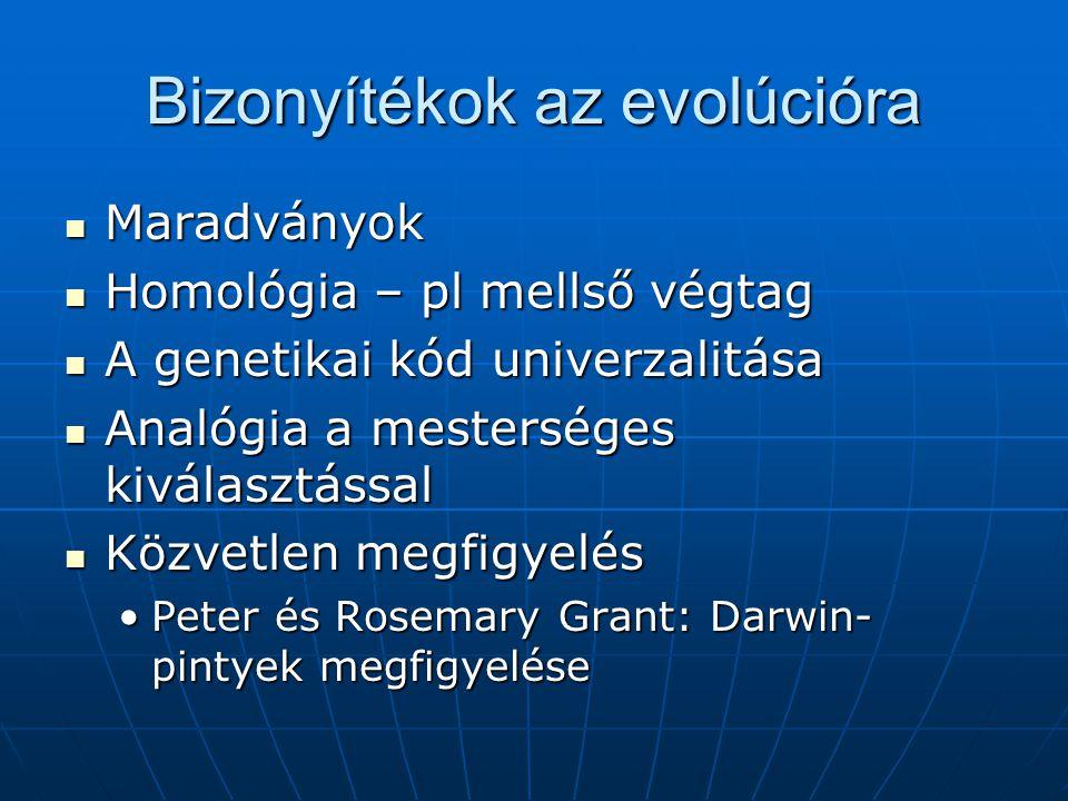 Bizonyítékok az evolúcióra