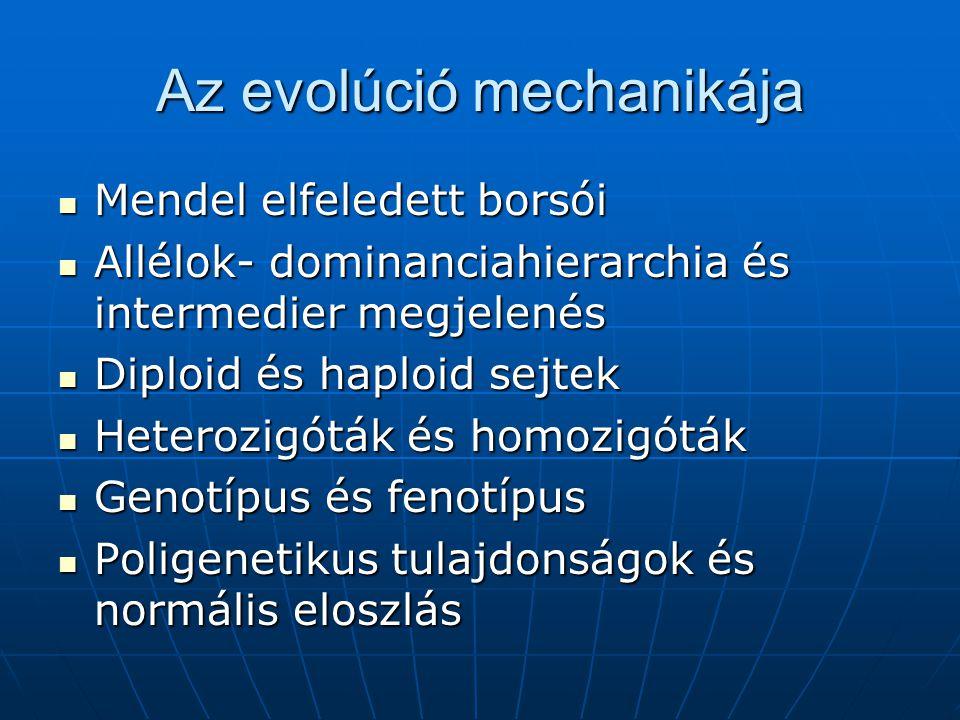 Az evolúció mechanikája
