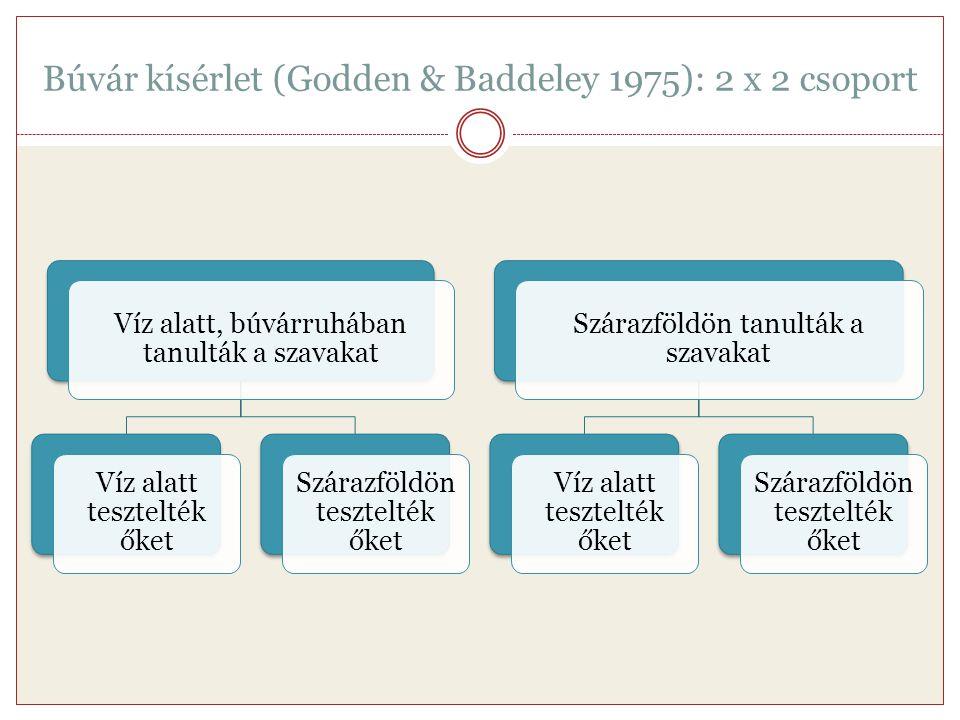 Búvár kísérlet (Godden & Baddeley 1975): 2 x 2 csoport