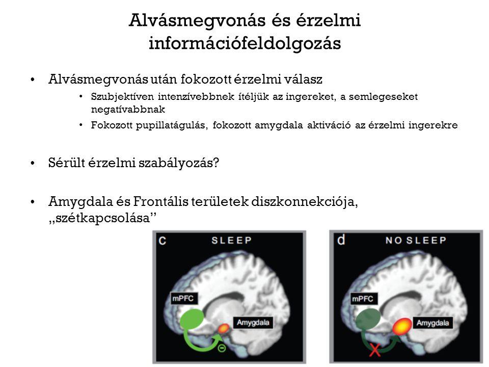 Alvásmegvonás és érzelmi információfeldolgozás