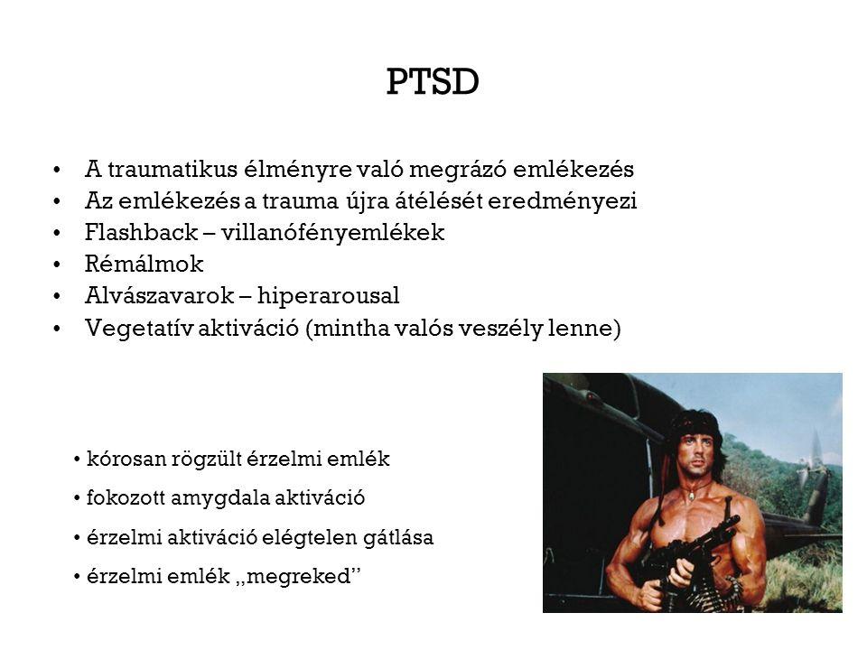 PTSD A traumatikus élményre való megrázó emlékezés