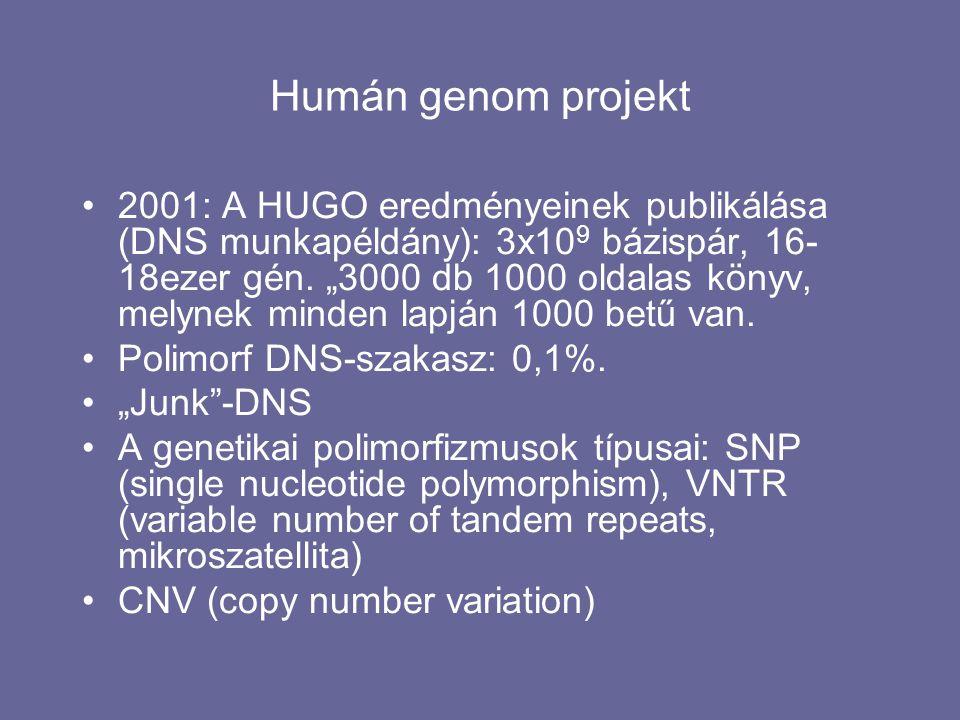 Humán genom projekt