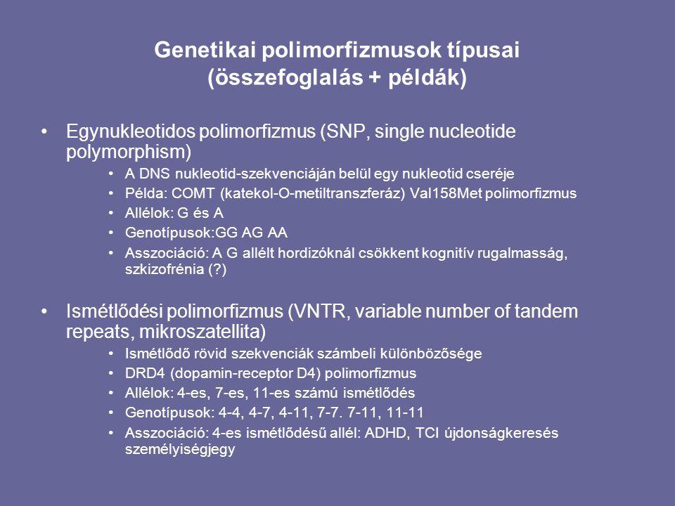 Genetikai polimorfizmusok típusai (összefoglalás + példák)