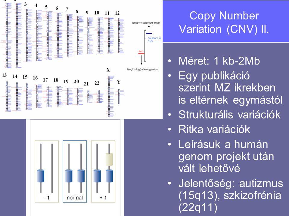 Copy Number Variation (CNV) II.
