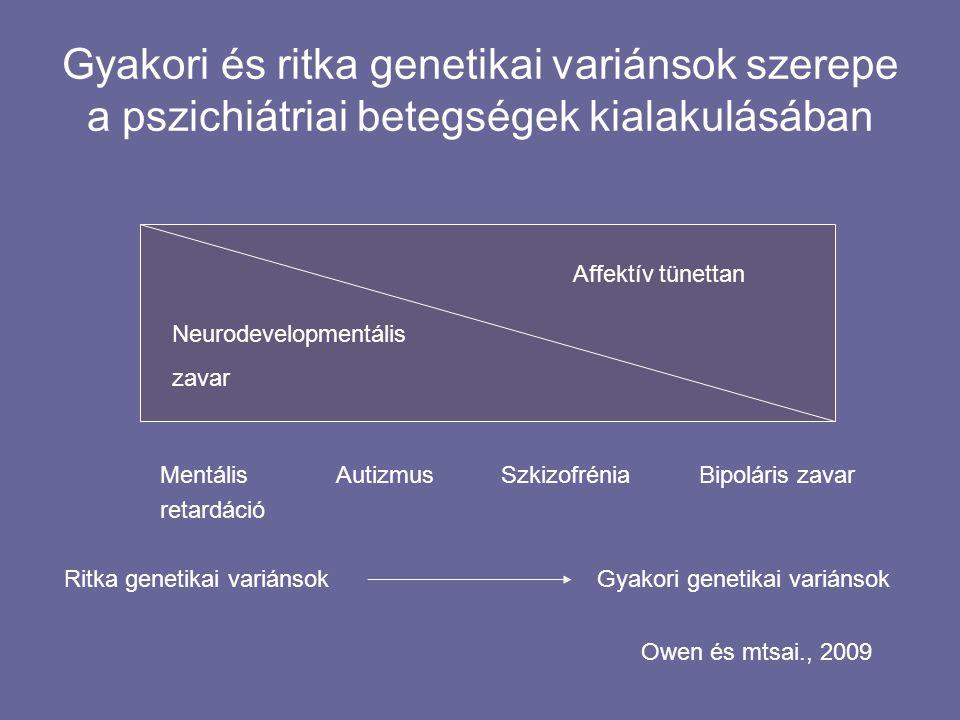 Gyakori és ritka genetikai variánsok szerepe a pszichiátriai betegségek kialakulásában