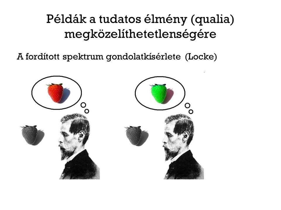 Példák a tudatos élmény (qualia) megközelíthetetlenségére