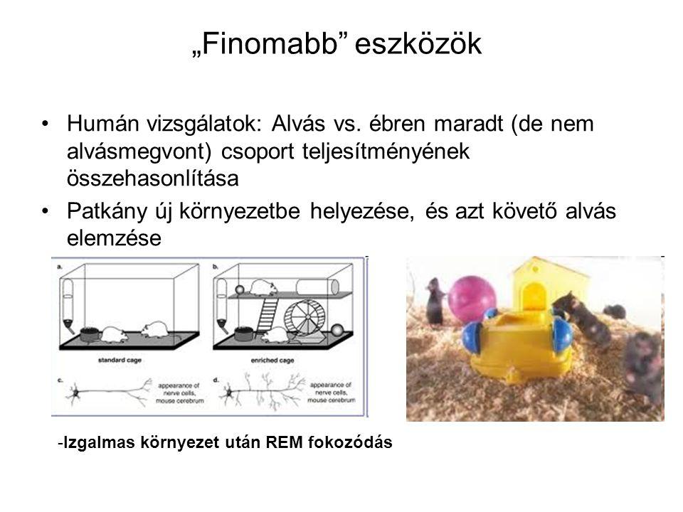 """""""Finomabb eszközök Humán vizsgálatok: Alvás vs. ébren maradt (de nem alvásmegvont) csoport teljesítményének összehasonlítása."""