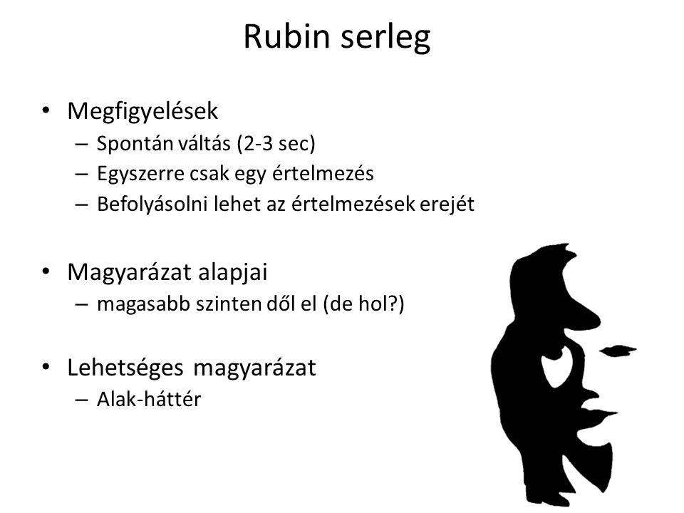 Rubin serleg Megfigyelések Magyarázat alapjai Lehetséges magyarázat
