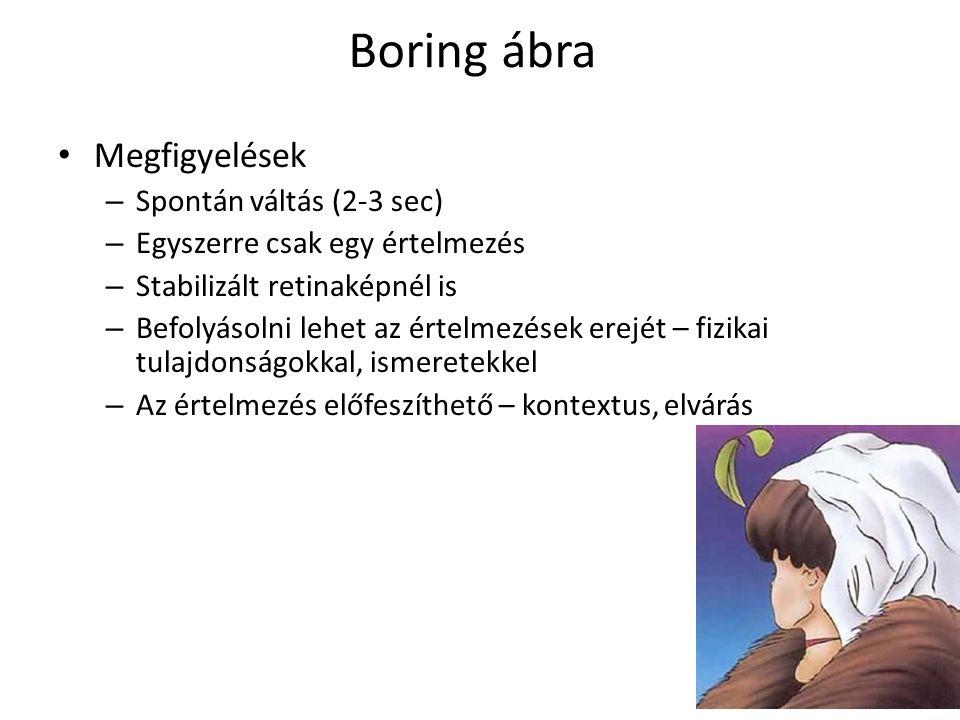 Boring ábra Megfigyelések Spontán váltás (2-3 sec)