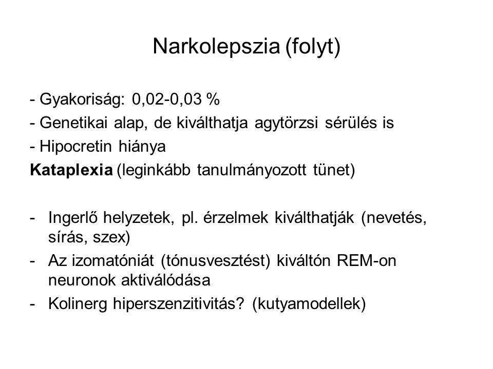 Narkolepszia (folyt) - Gyakoriság: 0,02-0,03 %