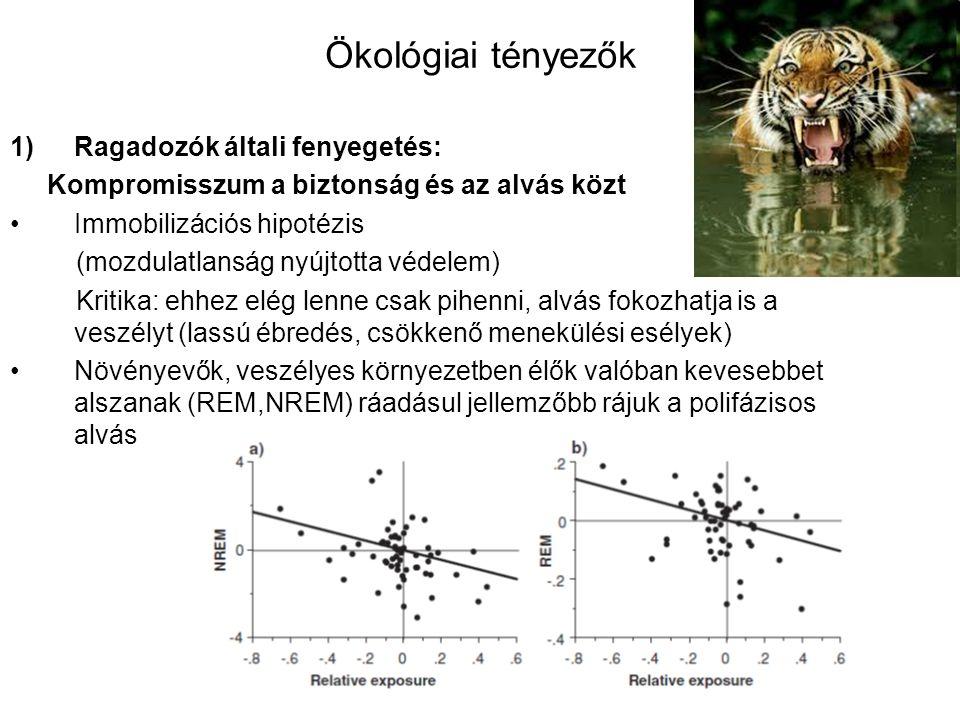 Ökológiai tényezők Ragadozók általi fenyegetés: