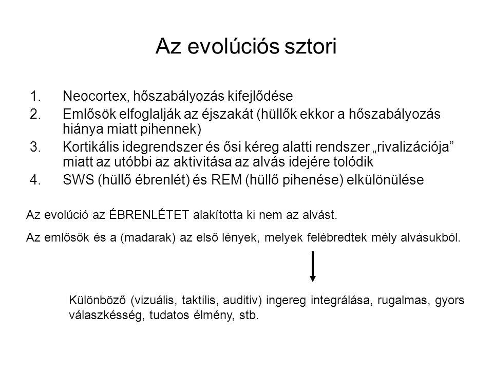 Az evolúciós sztori Neocortex, hőszabályozás kifejlődése