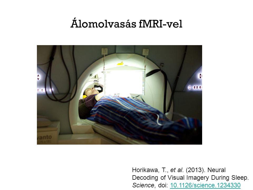Álomolvasás fMRI-vel Horikawa, T., et al. (2013).