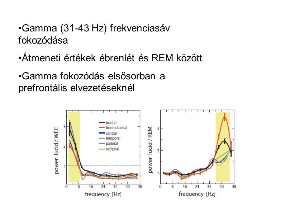 Gamma (31-43 Hz) frekvenciasáv fokozódása