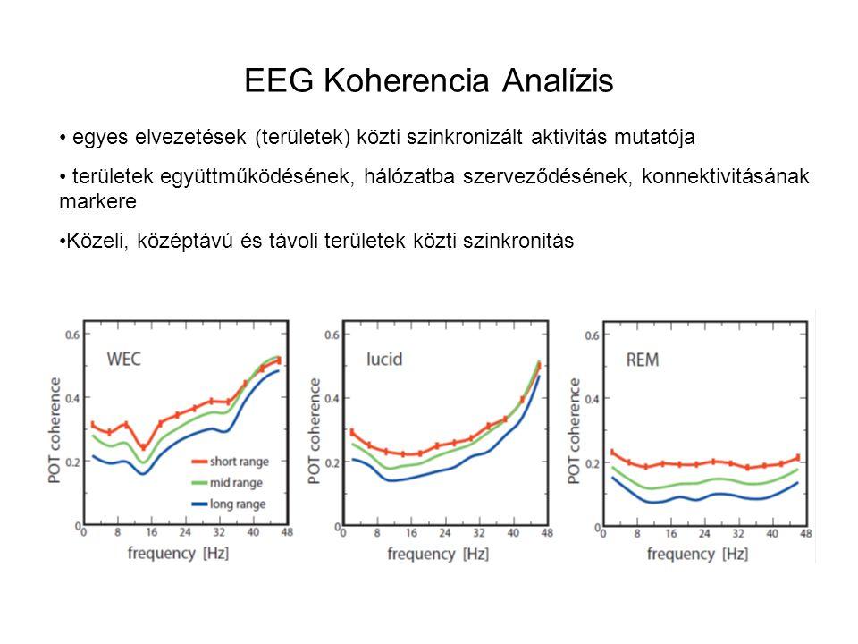 EEG Koherencia Analízis
