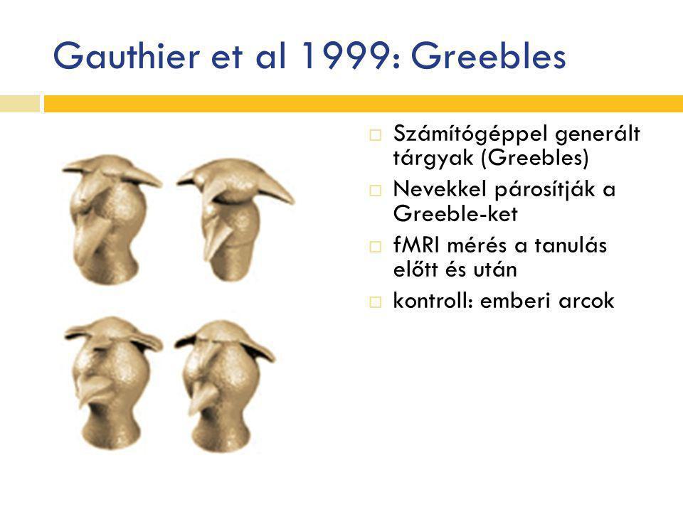 Gauthier et al 1999: Greebles