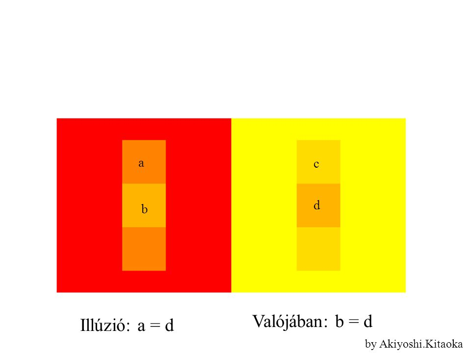 a d b c Valójában: b = d Illúzió: a = d by Akiyoshi.Kitaoka