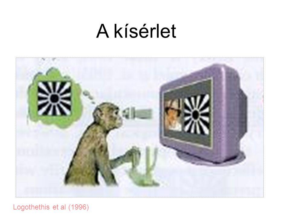 A kísérlet Logothethis et al (1996)