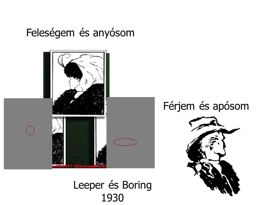 Feleségem és anyósom Férjem és apósom Leeper és Boring 1930