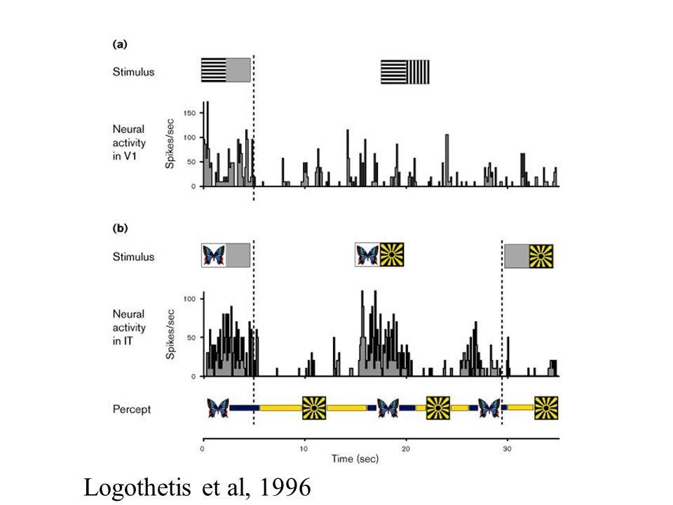 Logothetis et al, 1996