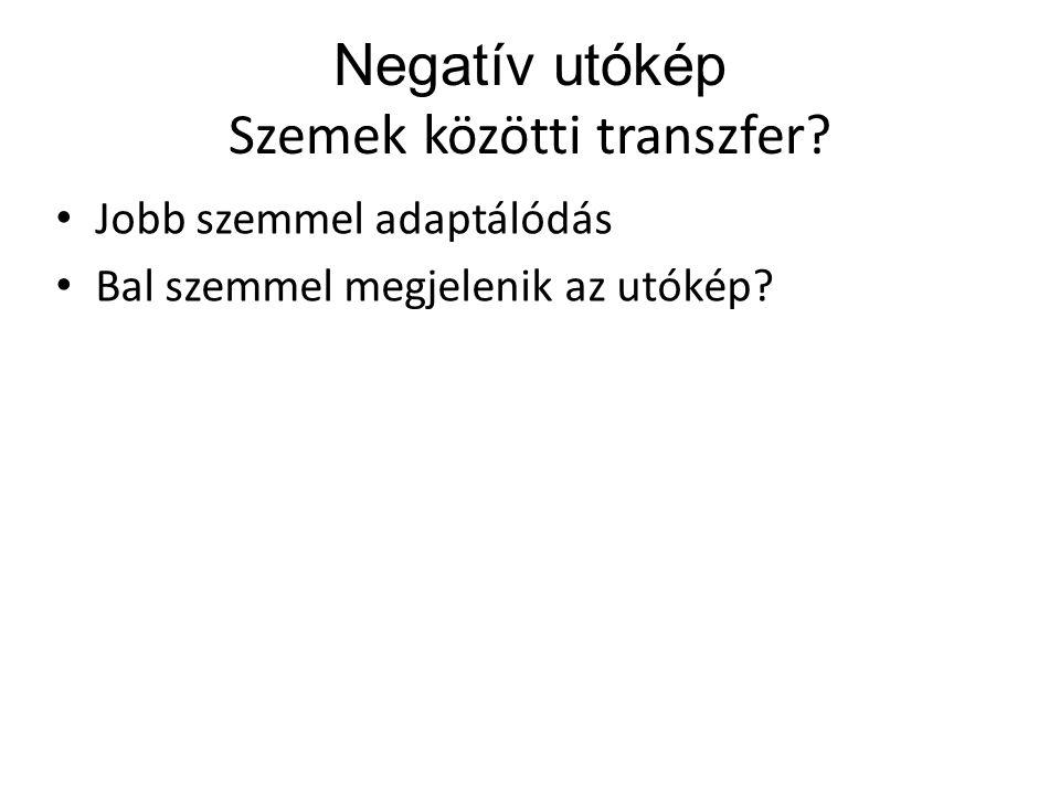 Negatív utókép Szemek közötti transzfer