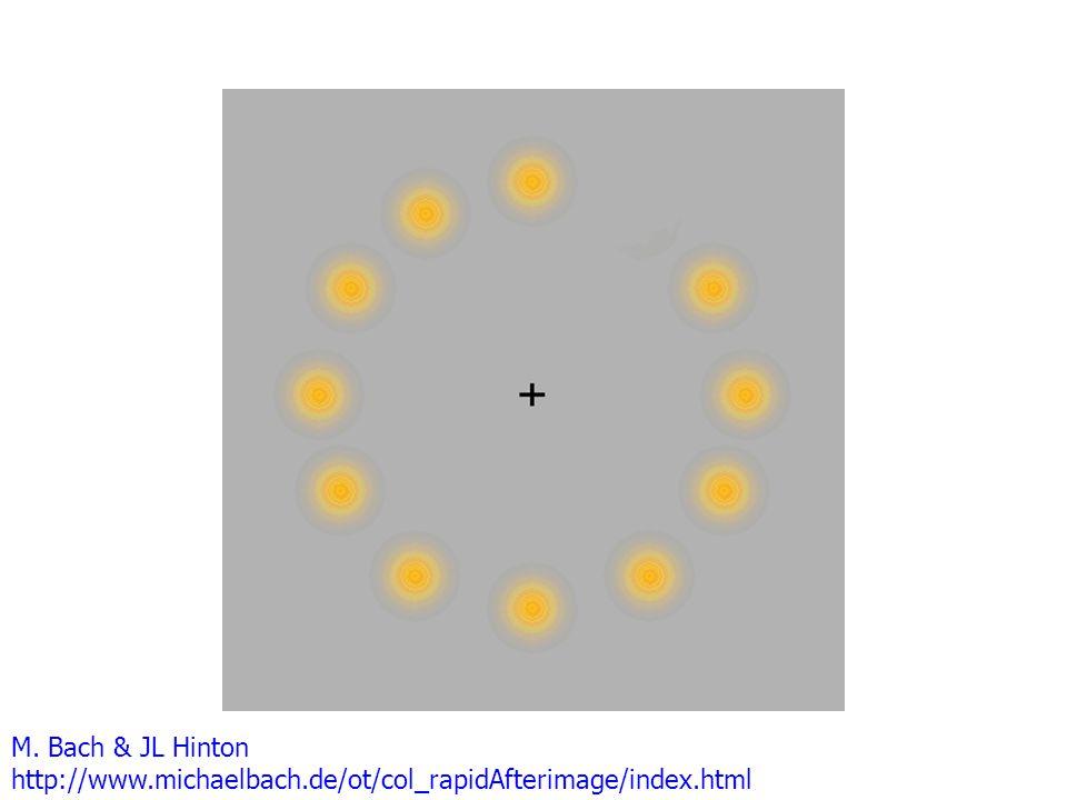 M. Bach & JL Hinton http://www.michaelbach.de/ot/col_rapidAfterimage/index.html