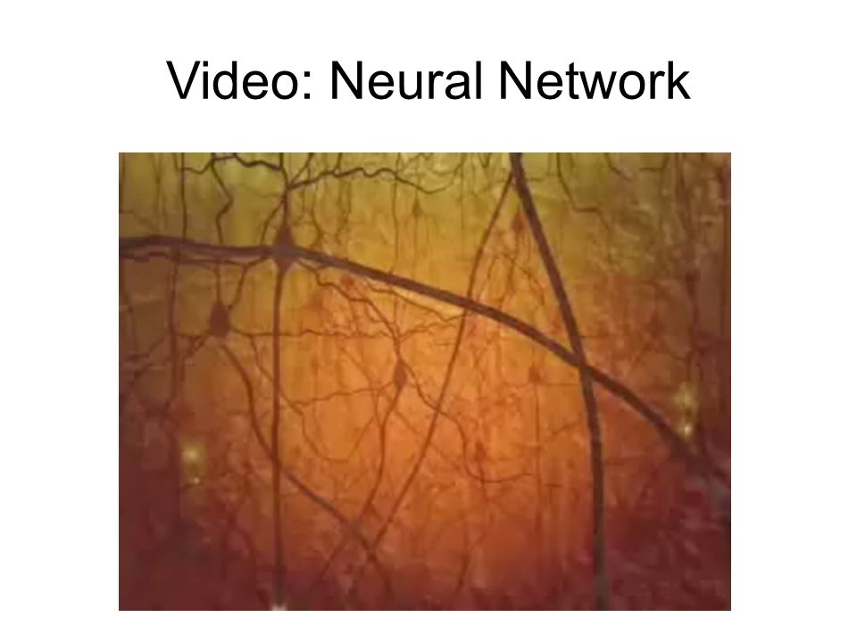 Video: Neural Network