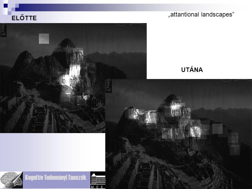 """attantional landscapes"