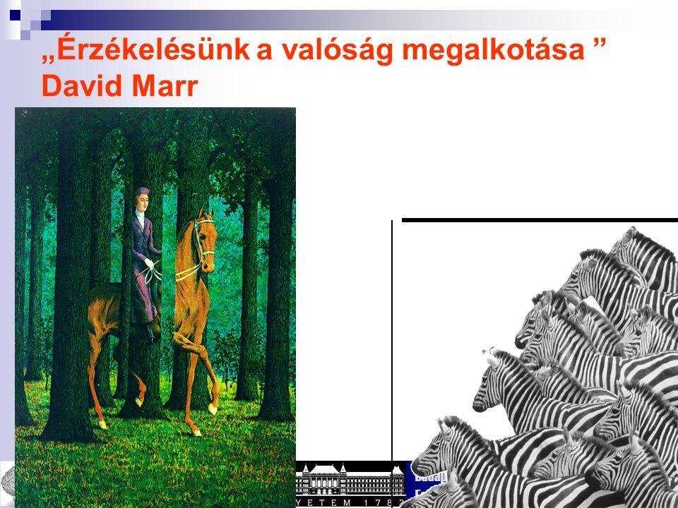 """""""Érzékelésünk a valóság megalkotása David Marr"""