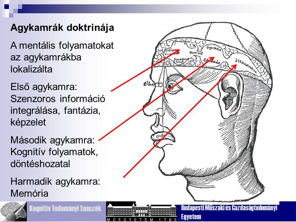 Agykamrák doktrinája A mentális folyamatokat az agykamrákba lokalizálta. Első agykamra: Szenzoros információ integrálása, fantázia, képzelet.