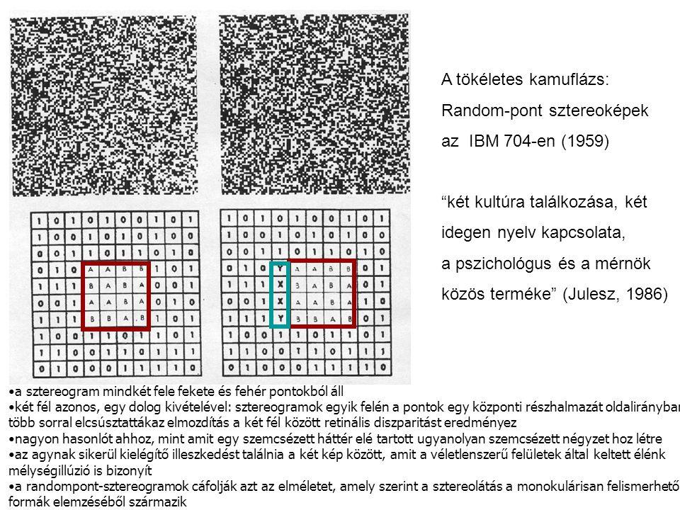 A tökéletes kamuflázs: Random-pont sztereoképek az IBM 704-en (1959)