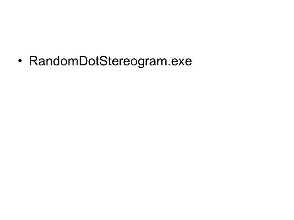 RandomDotStereogram.exe
