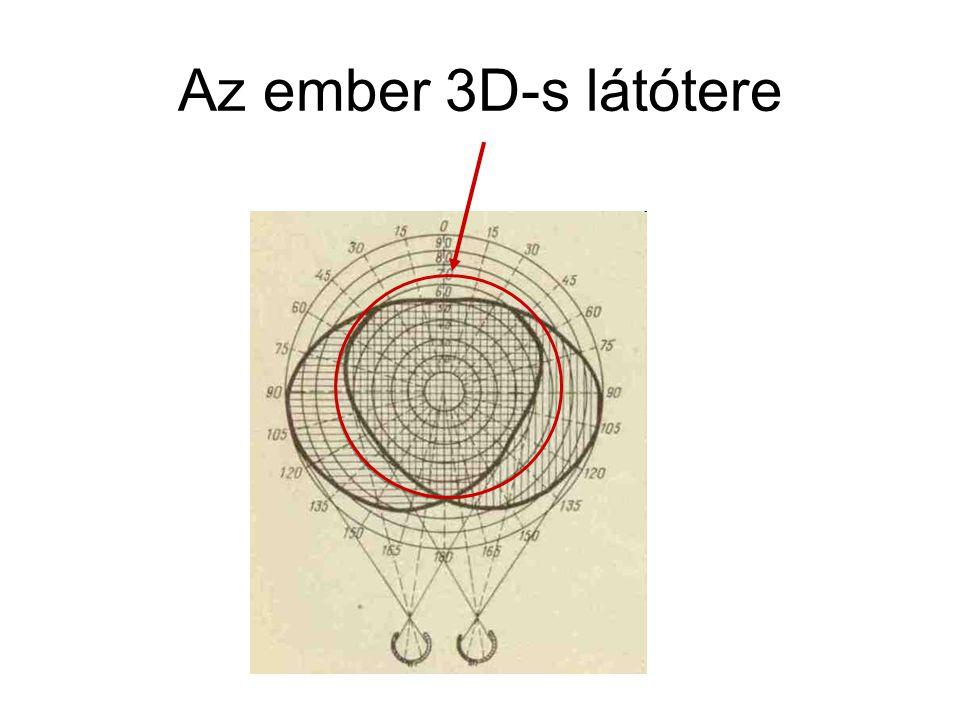 Az ember 3D-s látótere