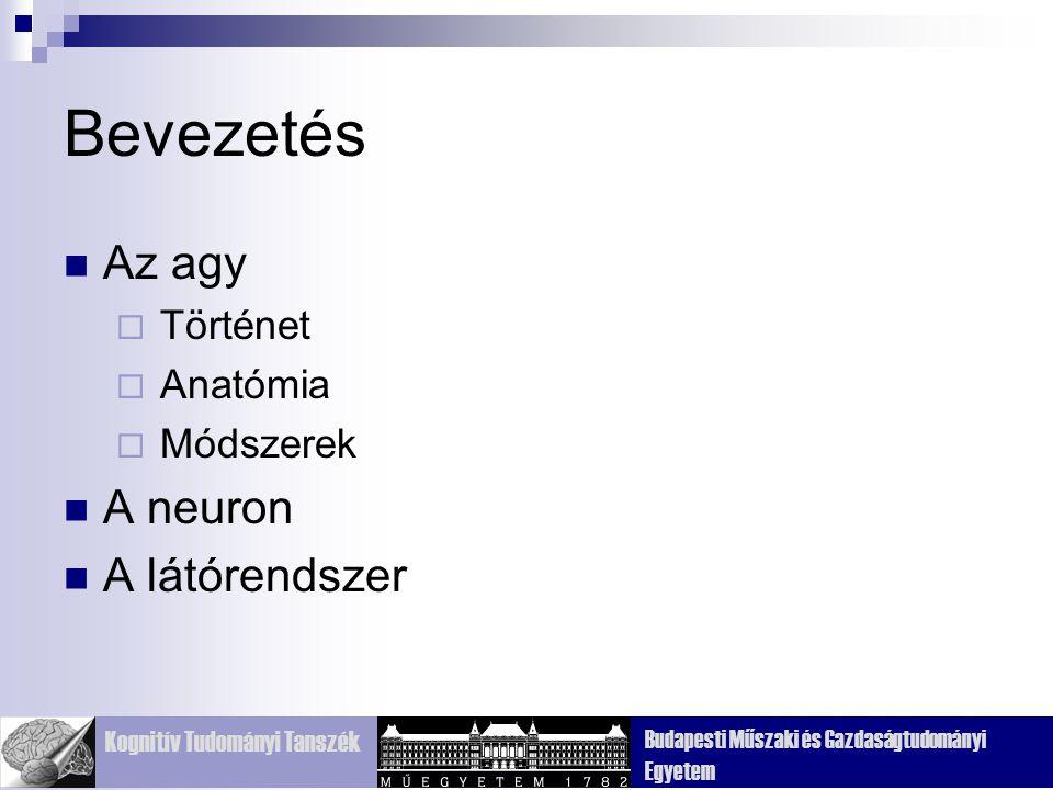 Bevezetés Az agy Történet Anatómia Módszerek A neuron A látórendszer