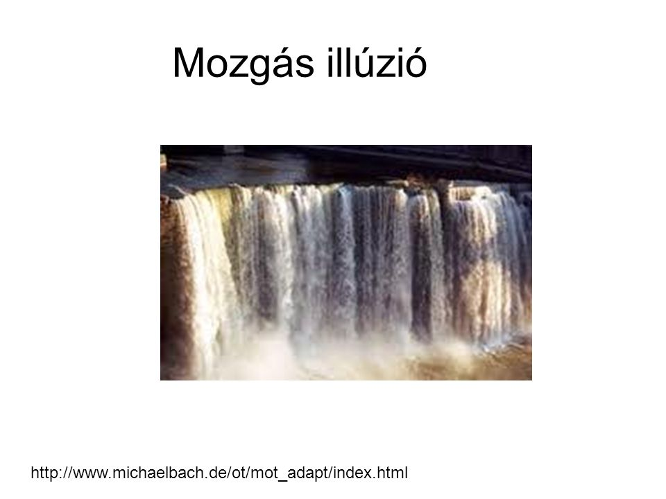 Mozgás illúzió http://www.michaelbach.de/ot/mot_adapt/index.html