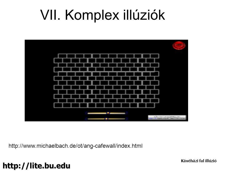 VII. Komplex illúziók http://lite.bu.edu