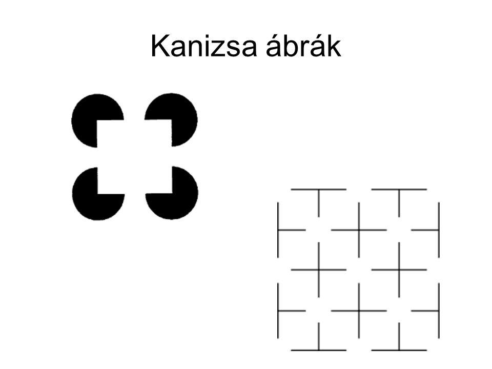 Kanizsa ábrák